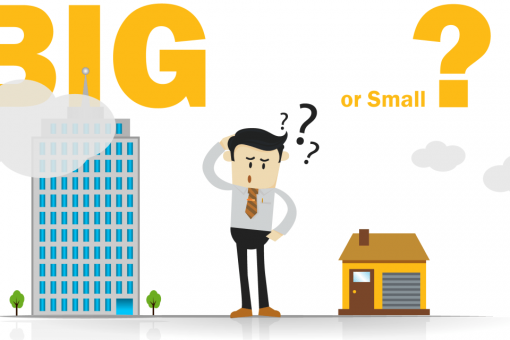 small-startup-or-big-organization